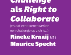Right to Challenge – rapport en essay